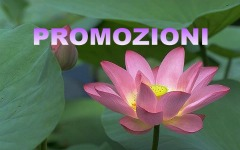 promotional_rate_(save_10%)
